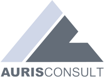 AURIS IT Consult GmbH