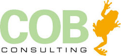 COB Consulting, Collaboration, Wien